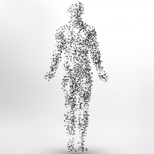 gratis råd - kroppen som barometer